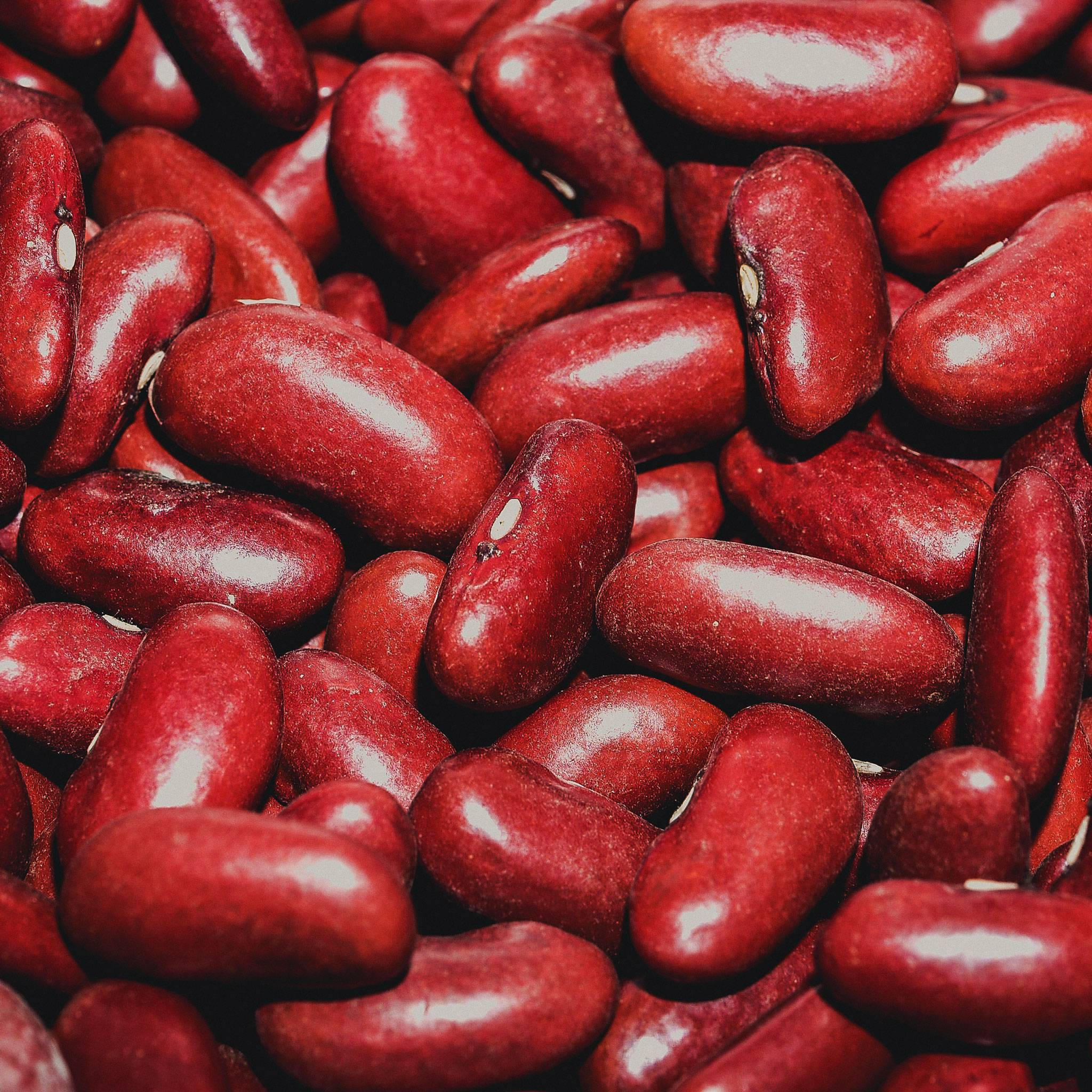 Røde bønner